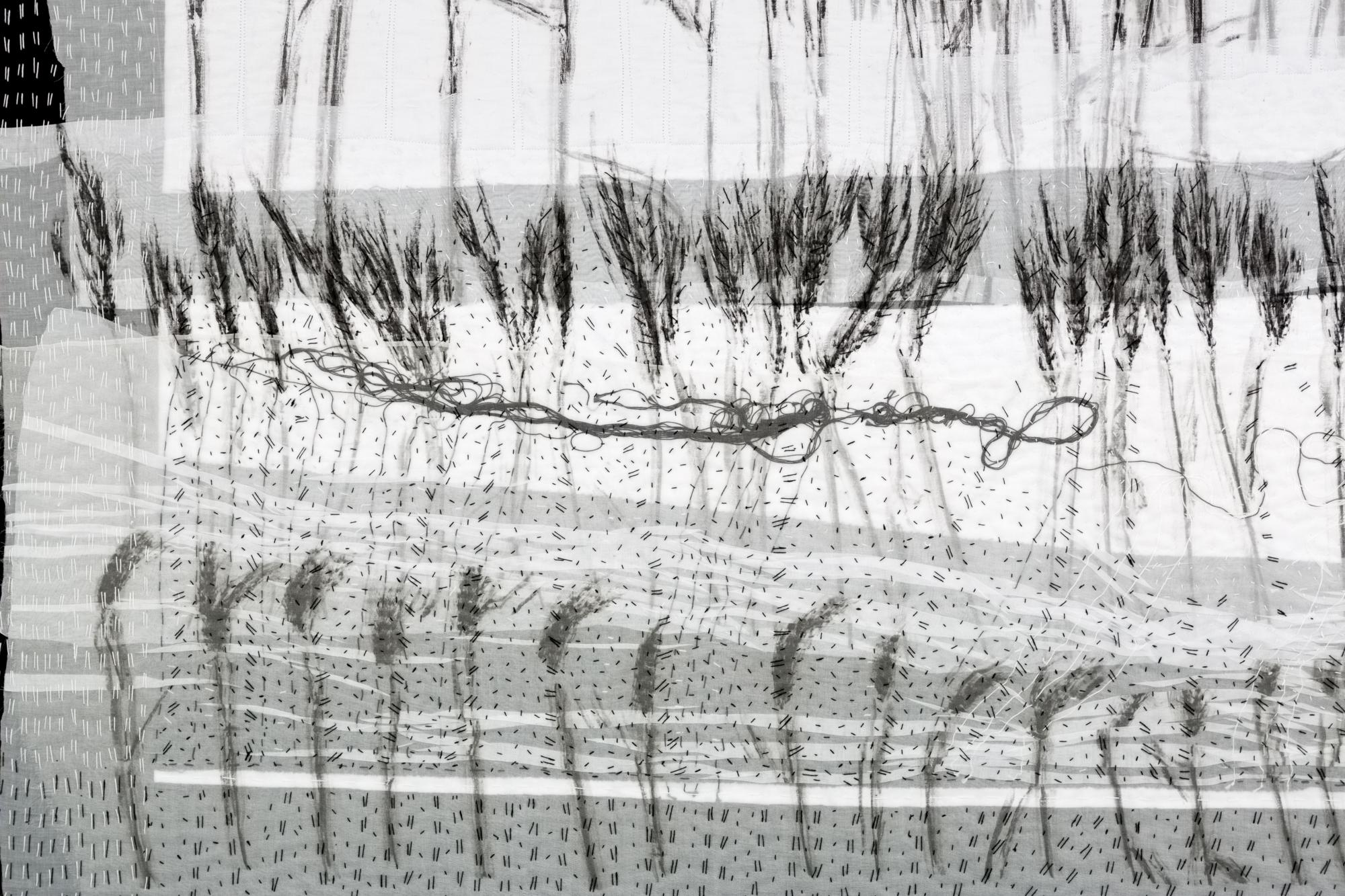 Detail of Wheat & Barley Fields
