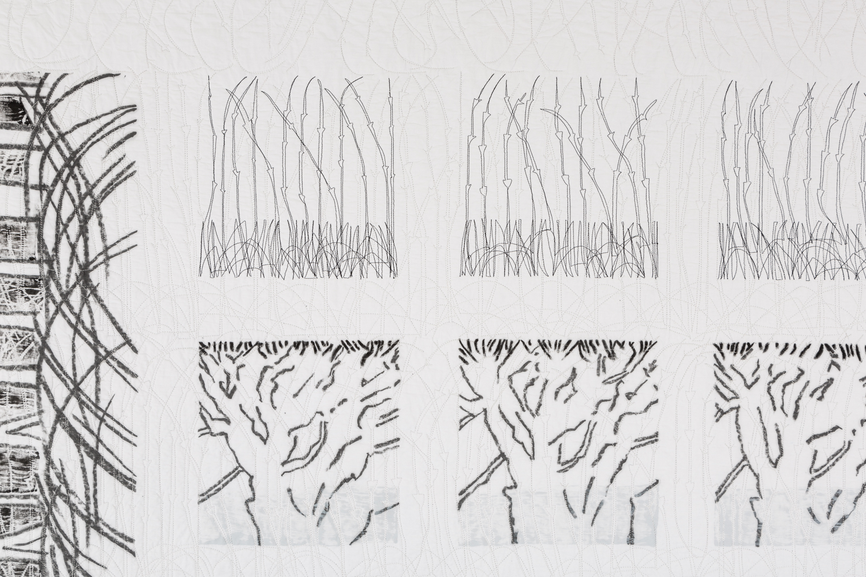 Detail of Hedges & Edges