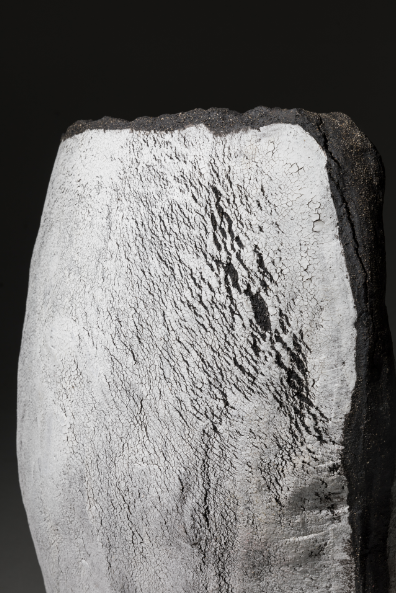The Brodgar Collection - Large Vessel Close Up