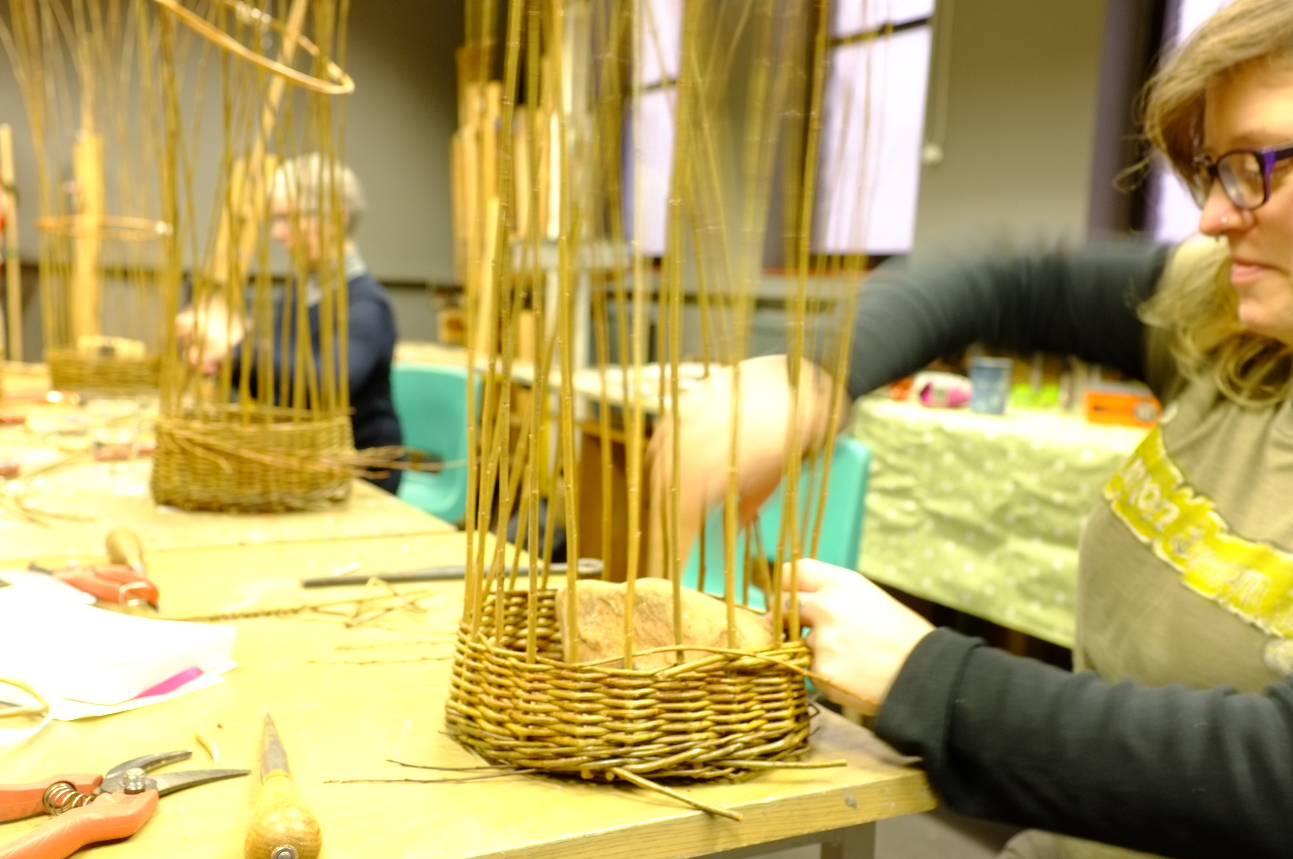 Willow Basketry Course