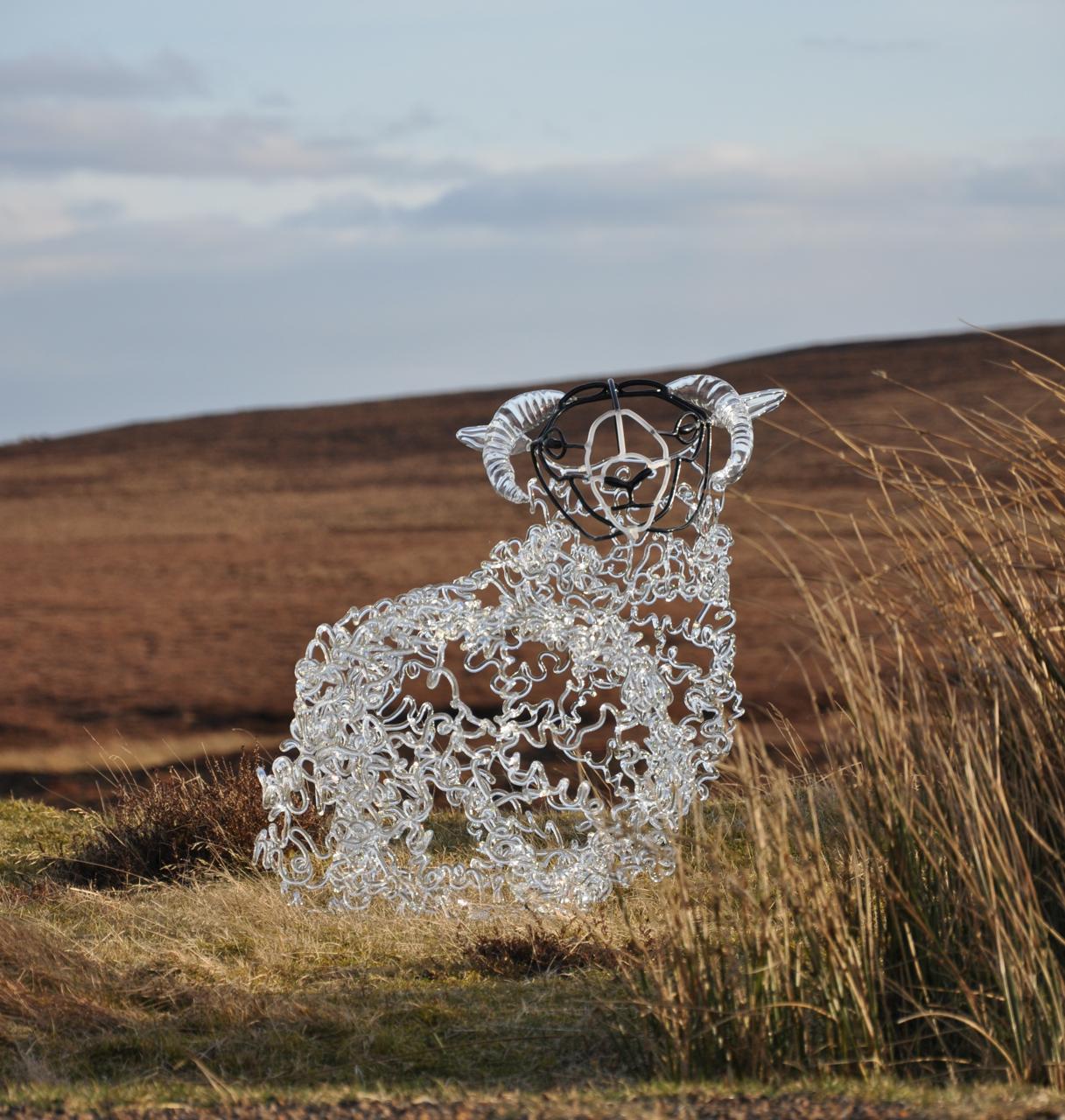 Perthshire Sheep