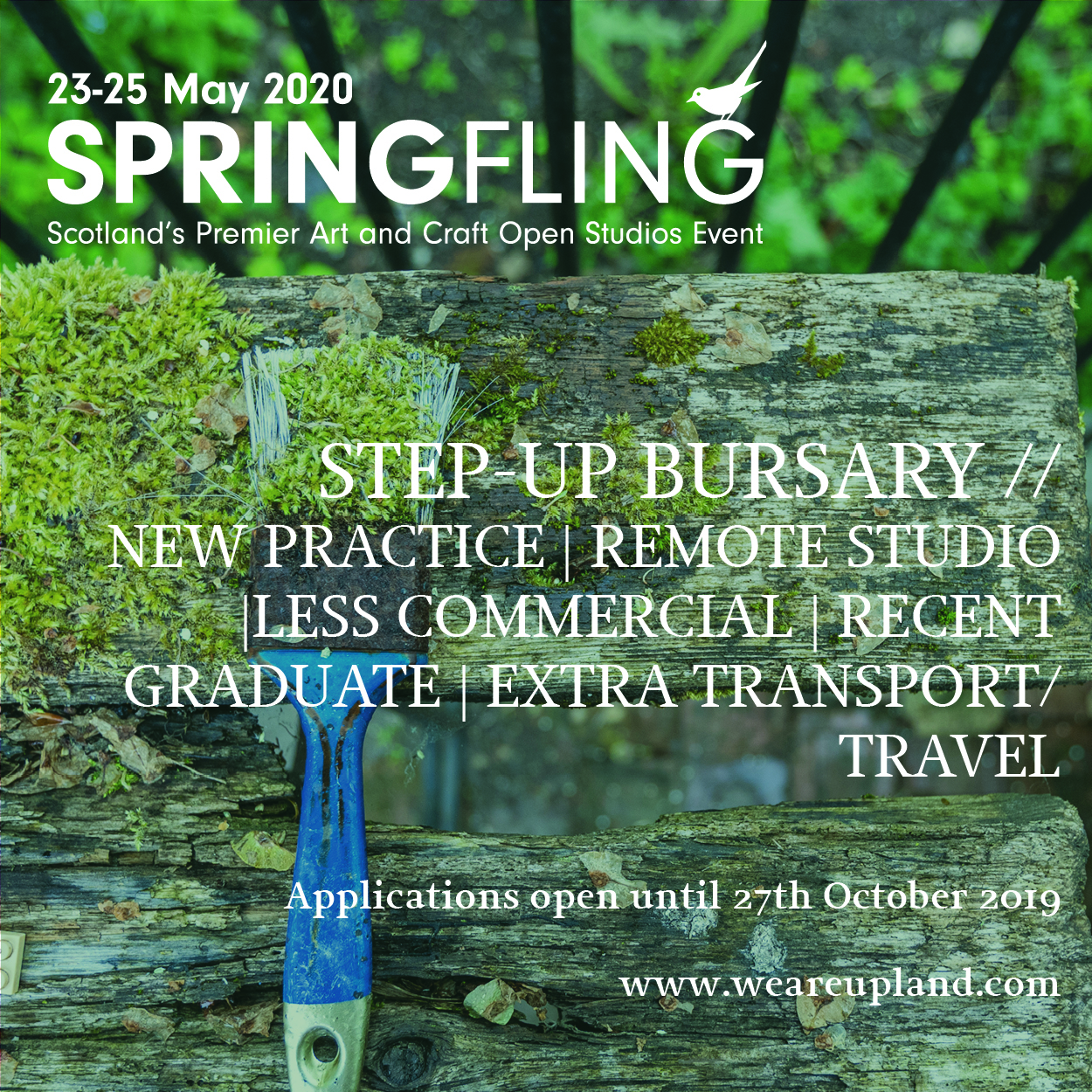 Spring Fling 2020 Applications Open Image #4