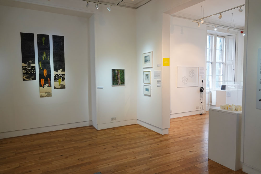 a view from Fife Contemporary's Lines Exhibition (2020)_2