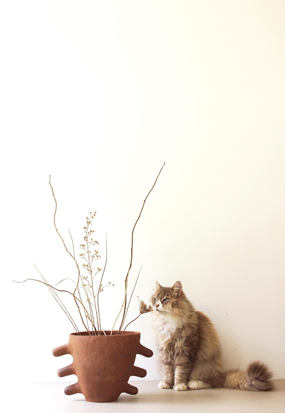 The Crab Vase