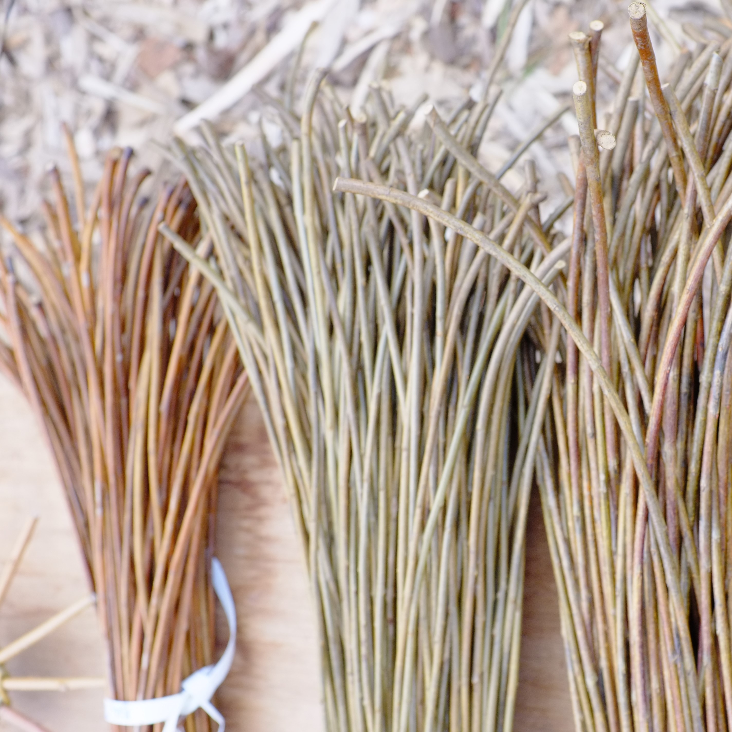 Learn a Craft at the Botanic Cottage: Willow Baskets