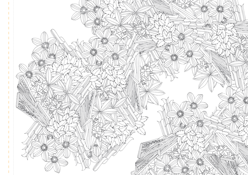 Atlas Edition: Patterns of Flora | Mapping Seven Raasay Habitats -  Colouring Book, Woodland