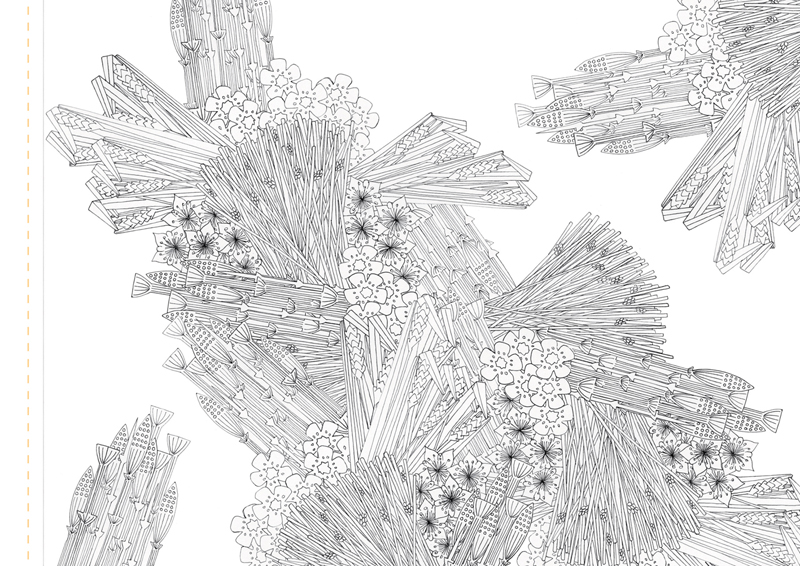Atlas Edition: Patterns of Flora | Mapping Seven Raasay Habitats -  Colouring Book, Fresh-water Loch